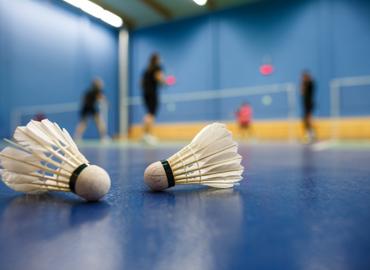 synergies-vector-sports-badminton