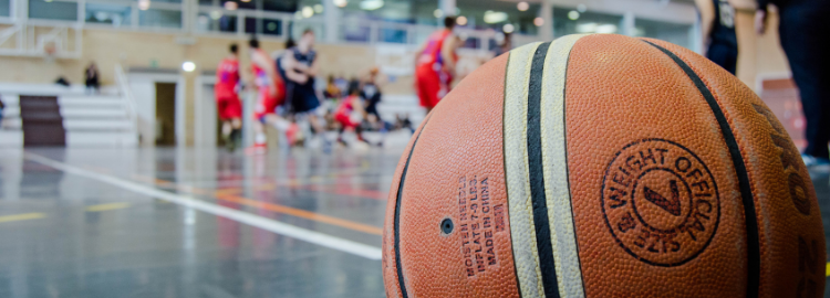 synergies-vector-sports-basketball