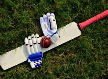 synergies-vector-sports-cricket