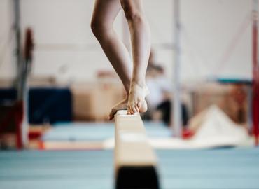 synergies-vector-gymnastique