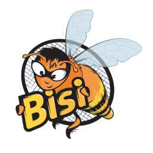 Volants de Badminton BISI Shuttlecocks-1
