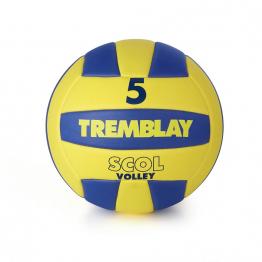 BALLON DE VOLLEYBALL - T5-1